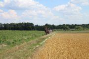 Obóz jeździecko-rowerowy - Kurozwęki 2021